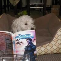Amelie reading TWP